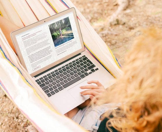 Diseño web escuela de biodanza Pirinea