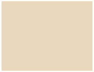 Webs con Alma
