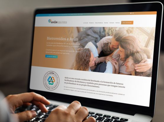 diseño web escuela Ayün